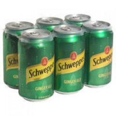 Ginger Ale Cans 6 Pack Soda